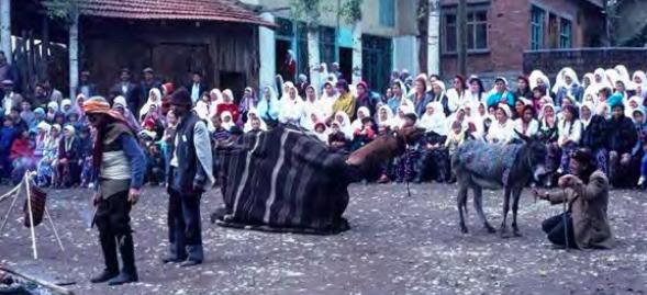 Köy Seyirlik Oyunları Koy Seyirlik Oyunlari